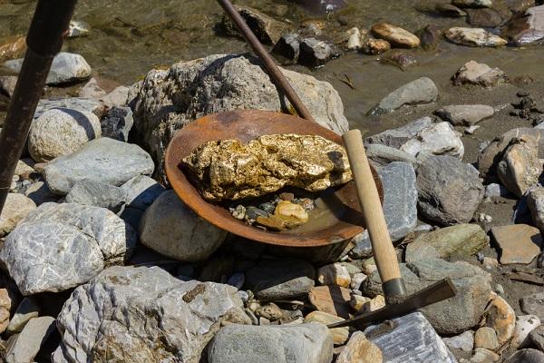 oregon gold nugget